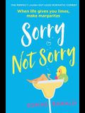 Sorry Not Sorry: The perfect laugh out loud romantic comedy