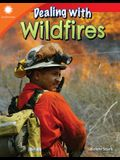 Dealing with Wildfires