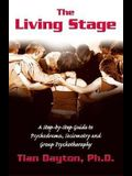 The Living Stage: A Step-By-Step Guide to Psychodrama, Sociometry and Experiential Group Therapy