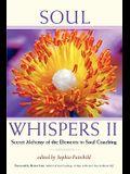 Soul Whispers II: Secret Alchemy of the Elements in Soul Coaching