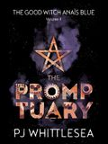 The Promptuary: The Extraordinary Adventures of the Good Witch Anaïs Blue Volume 2