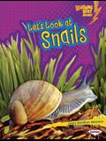 Let's Look at Snails