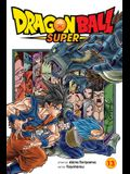 Dragon Ball Super, Vol. 13