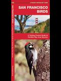 San Francisco Birds: An Introduction to Familiar Species