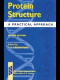 Protein Structure - A Practial Approach 2nd Edition