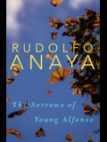 The Sorrows of Young Alfonso, 15