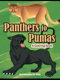 Panthers to Pumas: A Coloring Book