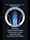 Cerebrosynergicreflexia