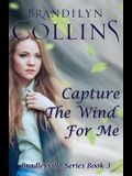 Capture The Wind For Me