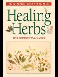 Healing Herbs: A Last Conversation with Pauline Kael