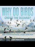 Why Do Birds Cross the Oceans? Animal Migration Facts for Kids - Children's Animal Books