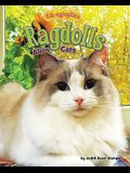 Ragdolls: Alien Cats