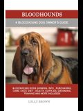 Bloodhounds: A Bloodhound Dog Owner's Guide