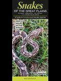 Snakes of the Great Plains KS, Ne, Ok & TX Panhandle