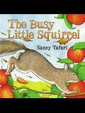 Busy Little Squirrel