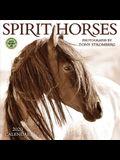 Spirit Horses 2020 Wall Calendar: Photography by Tony Stromberg