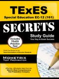 TExES Special Education Ec-12 (161) Secrets Study Guide: TExES Test Review for the Texas Examinations of Educator Standards