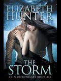 The Storm: Irin Chronicles Book Six