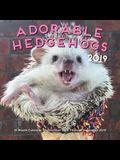 Adorable Hedgehogs Mini 2019: 16-Month Calendar - September 2018 Through December 2019