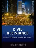 Civil Resistance: What Everyone Needs to Know(r)
