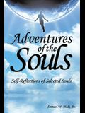 Adventures of the Souls: Self-Reflections of Selected Souls