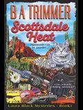 Scottsdale Heat: a fun, romantic, thrilling, adventure...