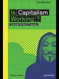 Is Capitalism Working?: A Primer for the 21st Century