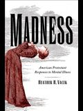 Madness: American Protestant Responses to Mental Illness (Studies In Religion, Theology, and Disability)