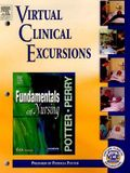 Virtual Clinical Excursions 2.0 to Accompany Fundamentals of Nursing [With CDROM]