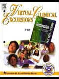 Virtual Clinical Excursions 1.0 to Accompany Fundamentals of Nursing