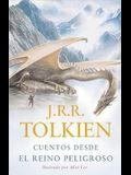 Cuentos desde el reino peligroso (Spanish Edition)