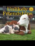 Unlikely Friendships Wall Calendar 2020