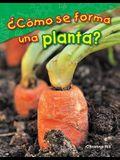 ¿cómo Se Forma Una Planta? (What Makes a Plant?)