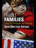 Fragile Families: Foster Care, Immigration, and Citizenship