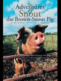 The Adventures of Snout the Brown-Snout Pig: A Modern Fairytale Series