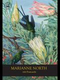 Marianne North 100 Postcards