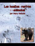 Las Huellas Y Rastros de Los Animales: (animal Tracks and Traces in Spanish)