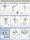 Strength Training for Shoulders Poster