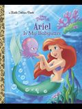 Ariel Is My Babysitter