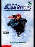 Ten True Animal Rescues