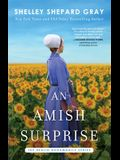 An Amish Surprise, 2