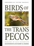 Birds of the Trans-Pecos