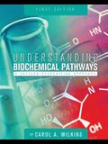 Understanding Biochemical Pathways: A Pattern-Recognition Approach