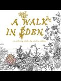 A Walk in Eden: A Colouring Book by Anders Nilsen