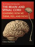 The Brain and Spinal Cord: Learning How We Think, Feel and Move