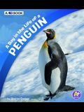 A Day in the Life of a Penguin: A 4D Book