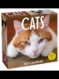 Cats 2021 Day-To-Day Calendar