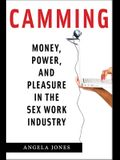 Camming: Money, Power, and Pleasure in the Sex Work Industry