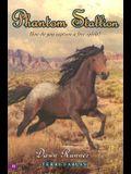 Phantom Stallion #21: Dawn Runner