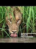 Wildlife Photographer of the Year: Portfolio 28